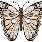 Fluturele pianist